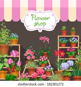 Houseplants in show-window of flower shop. Vector illustration