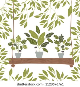 houseplants in swing decorative icon