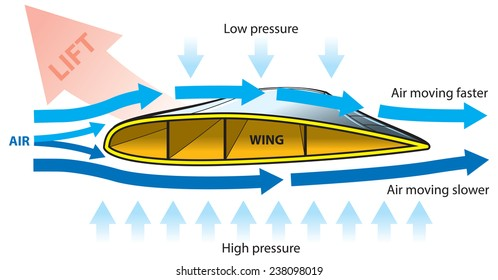 How the Airplane lifting - wing cross-section