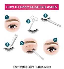 How to apply false  eyelashes vector illustration