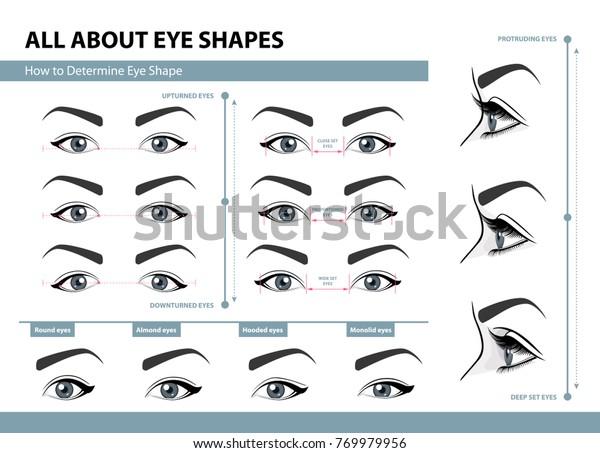 目の形状の決定方法女性の目の種類はさまざまです キャプションとベクターイラストのセット メイク用のテンプレート 研修ポスター のベクター画像素材 ロイヤリティフリー