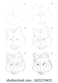How to draw sketch of imaginary cute wolf head. Creation step by step pencil drawing. Education for artists. Textbook for developing artistic skills. Hand-drawn vector on computer by graphic tablet.