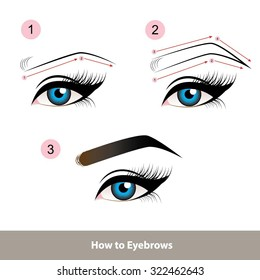 How to Eyebrows vector