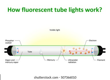 How fluorescent tube lights work. An electric current excites mercury vapour which produces ultraviolet light. Then a phosphor coating on the inside of the bulb to glow