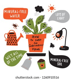 How to grow carnivorous plant. Funny hand drawn infographic poster about venus flytrap. Vector design. White background.