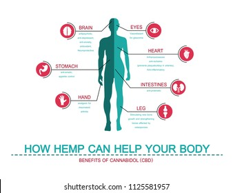 how hemp can help your body benefits of  cannabis
