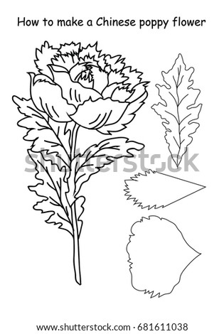 How make chinese poppy flower outline stock vector royalty free how to make a chinese poppy flower outline scheme black and white colors mightylinksfo