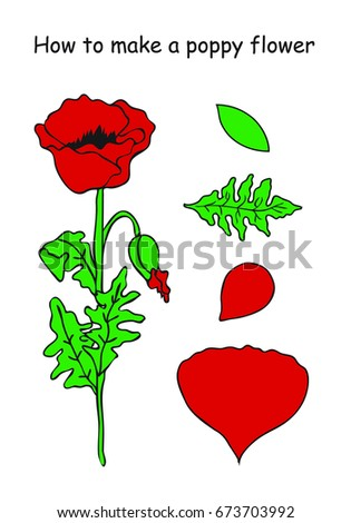 How make poppy flower outline scheme stock vector royalty free how to make a poppy flower outline scheme red and green colors vector mightylinksfo