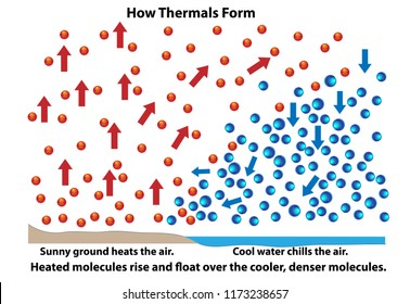 How thermals form. Science diagram showing how molecules react during heating and cooling over land or water.