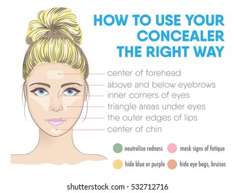 How to use your concealer the right way infographic. Vector illustration with makeup and beauty tips. Face zones for highlighter correction. How to choose the color.