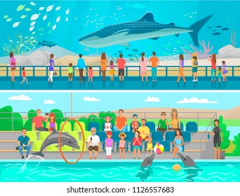 Huge oceanic aquarium and dolphinarium sketch. Whale and sea and ocean fish swimming among seaweed, dolphins performing for public vector illustration
