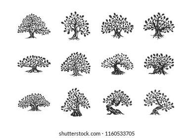 Huge and sacred oak tree plant silhouette logo isolated on white background set. Modern vector national tradition badge sign design. Premium quality natural organic logotype emblem illustration.