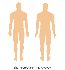 human anatomical man silhouette view from the front. anatomical human man silhouette  view from the back. Modern Medical vector infographics. Medic anatomy