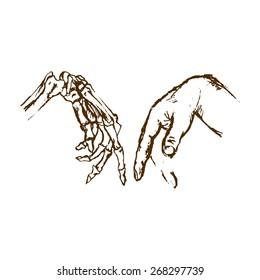 Human Anatomy. Hand & Skeleton hand. The bones of the hand and wrist. Design elements. Hand drawn illustration.