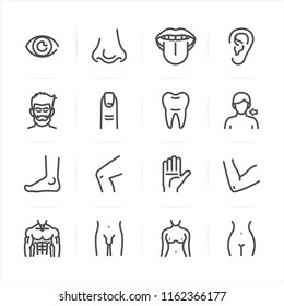 Human Anatomy icons with White Background