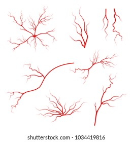 Human blood arteries. Vein vector icon set. Eye veins silhouette, health red  artery system.