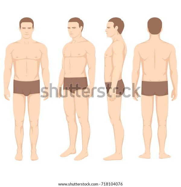 human body anatomy vector man silhouette stock vector royalty free 718104076 https www shutterstock com image vector human body anatomy vector man silhouette 718104076