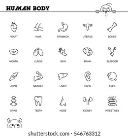 Human body flat icon set. Collection of high quality outline symbols of internal organs for web design, mobile app. Vector thin line icons or logo of eyes, bones, heart, spine, brain, etc.