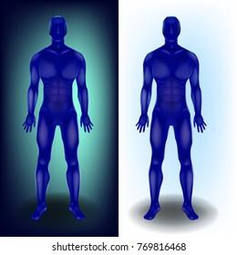Human body,  full length. 3D vector illustration