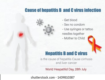 """Human body with hepatitis virus in liver and lettering case of hepatitis infection with slogan and the days, name of """"World Hepatitis Day"""" campaign on white background. All in vector design."""