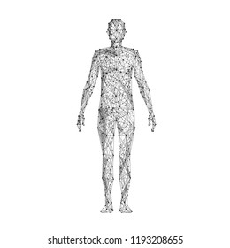 Human body. Isolated black vector illustration in low-poly style on a white background. The drawing consists of thin lines and dots. Polygonal image on topics of science or medicine. Low poly EPS.
