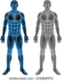 Human body on white background illustration