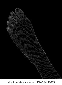 Human body parts. Foot wireframe vector.