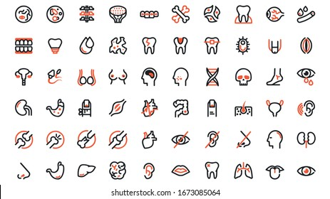 Human body parts linear icons set. Anatomy. Health care.