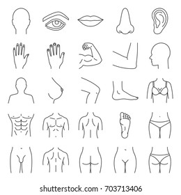 Human body parts linear icons set. Anatomy. Health care. Thin line contour symbols. Isolated vector outline illustrations