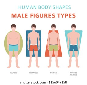 Human body shapes. Male figures types set. Vector illustration