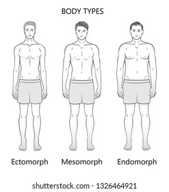 Human body types. Three figures, black and white. Forms: ectomorph, mesomorph and endomorph.