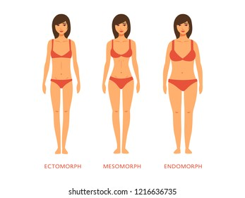 Human body types. Women as endomorph, ectomorph and mesomorph.
