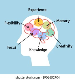 Human brain ability concept vector illustration. Knowledge, creativity, memory, experience, flexibility and focus functions.