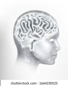 A human brain AI head face artificial intelligence or learning technology concept