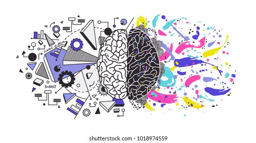 Human brain divided into right and left cerebral hemispheres responsible for different functions - creativity or arts and logic or logical thinking respectively. Colorful modern vector illustration.