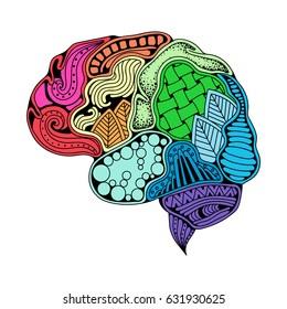 Human brain doodle decorative curves, creative mind, learning and design. Idea concept background