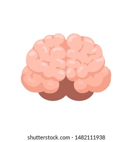 Human brain front view icon. Hnternal organs symbol in cartoon style isolated on white background. Vector illustration
