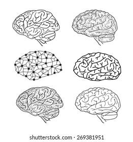 Human brain icons, vector illustration.