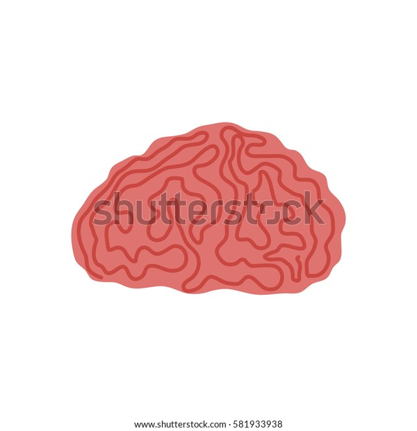 Human brain intelligence icon vector illustration graphic design