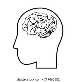 Human brain isolated