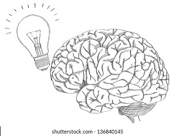 Human Brain with Light Bulb for Think Idea Concept Vector Outline Sketched Up, Vector Illustration EPS 10.