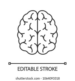 Human brain linear icon. Thin line illustration. Nervous system organ. Contour symbol. Vector isolated outline drawing. Editable stroke