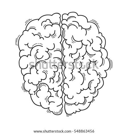 Human Brain Medical Design Stock Vector Royalty Free 548863456