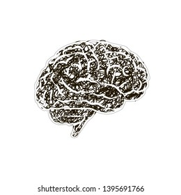 Human brain with messy doodle hatching, stress concept on white