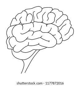Human brain outline. Mental health. Hand drawing. Vector illustration. Medical line icon on white background.