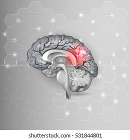 Human brain with red light abstract grey hexagon background and normal cardiogram