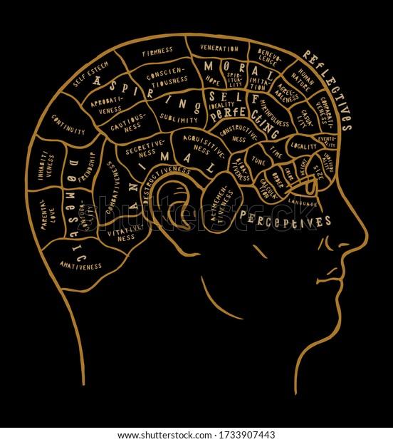 human-brain-scheme-vintage-vector-600w-1