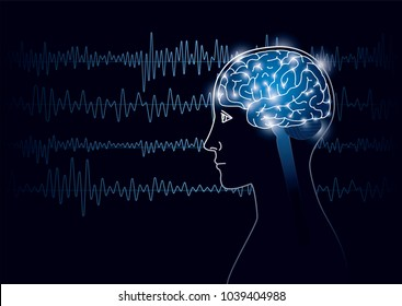 The human brain and brain waves