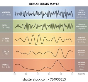 Human Brain Waves Diagram in five Colors with Explanations