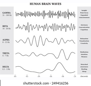 Human Brain Waves Diagram, lllustration in Black and White